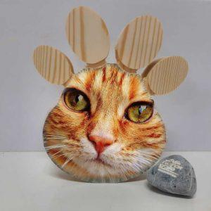 כף רגל חתול אישי