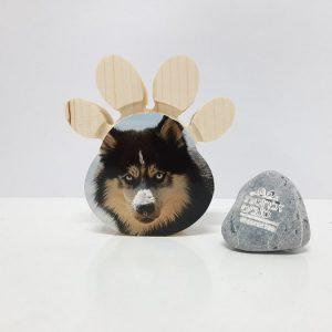 כף רגל כלב אישי