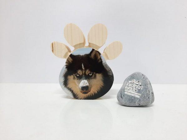 כף רגל כלב אישי 1010